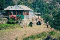 Una casetta sul viaggio del campo base di Annapurna, Nepal Immagine Stock