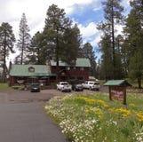 Una casetta vicino ad alpino, Arizona del prato di Hannagan Immagine Stock