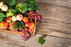 Una cassa della frutta fresca, vista da sopra Fotografie Stock Libere da Diritti