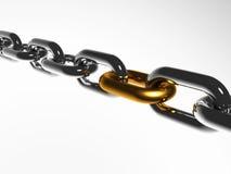 Una catena con il collegamento dorato Fotografia Stock
