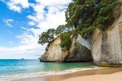Una caverna sulla spiaggia nella baia della cattedrale, Nuova Zelanda Fotografie Stock Libere da Diritti