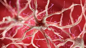 Una cellula nervosa umana sana royalty illustrazione gratis