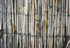 Una cerca con la hierba del bastón Fotos de archivo