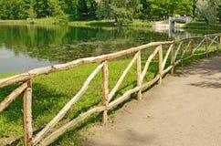 Una cerca de la madera de abedul Fotos de archivo
