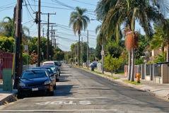 Una certa via nel cuore di Los Angeles con il cagnolino obbligatorio in mezzo alla via immagine stock
