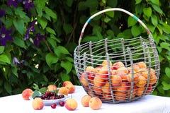 Una cesta de albaricoques está situada en una tabla en el jardín en un fondo de flores imagenes de archivo