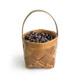 Una cesta de cereza del jardín Imágenes de archivo libres de regalías