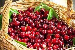 Una cesta de cerezas frescas. Foto de archivo libre de regalías