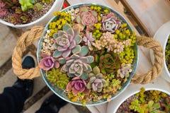 Una cesta de flores Fotografía de archivo libre de regalías