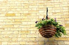 Una cesta de flores que cuelgan en la pared de ladrillo Foto de archivo libre de regalías