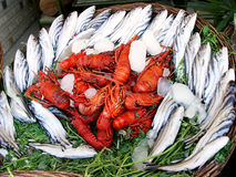 Una cesta de pescados y de langosta espinosa Fotos de archivo libres de regalías