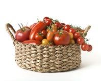Una cesta de tomates Imagen de archivo libre de regalías