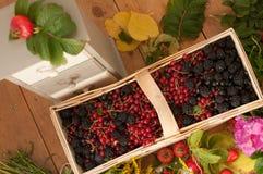 Una cesta llenó de bayas maduras y de un ramo de flores archivadas en una superficie de madera adornada con las caderas y las hoj Foto de archivo