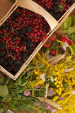 Una cesta llenó de bayas maduras y de un ramo de flores archivadas en una superficie de madera adornada con las caderas y las hoj Imágenes de archivo libres de regalías
