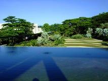 Una charca con verdor en el parque de Hort Fotografía de archivo