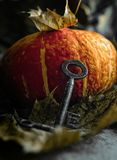 Una chiave d'annata antica contro un fondo della zucca e le foglie di volo immagini stock libere da diritti