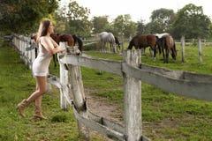 Una chica joven con un caballo Foto de archivo libre de regalías