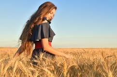 Una chica joven da un paseo entre el rye& x27; oídos de s imagen de archivo libre de regalías