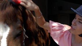 Una chica joven en un casco que monta está peinando una melena del caballo con un cepillo especial Cuidado para los animales 4K v metrajes