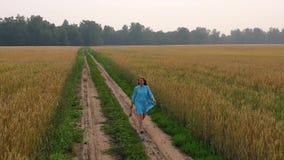 Una chica joven en un vestido camina a lo largo de un campo de trigo Madrugada, niebla ligera almacen de video