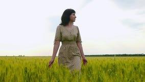 Una chica joven que camina feliz en la cámara lenta a través de un campo verde, tocando los oídos del trigo a mano almacen de metraje de vídeo