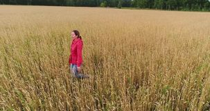 Una chica joven que corre a través del campo del trigo Tiroteo de un abejón Deportes al aire libre metrajes