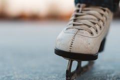 Una chica joven que se coloca en patines en una charca congelada en el hielo Imágenes de archivo libres de regalías
