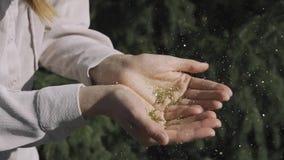 Una chica joven que sopla en sus manos con las chispas del oro en el fondo de la naturaleza metrajes