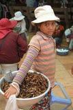 Una chica joven que vende el saltamontes secado Fotos de archivo libres de regalías