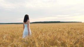 Una chica joven se coloca en un campo del trigo de oro en la puesta del sol y aumenta sus manos para arriba, cámara lenta almacen de metraje de vídeo