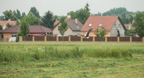 Una cicogna di volo Immagini Stock