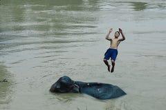una cierta hora de la diversión después de que el mahout lavara su elefante en el río Mekong fotos de archivo