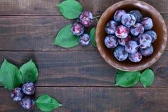 Una ciotola di ciliegia susina blu matura delle prugne su un fondo di legno scuro Immagini Stock Libere da Diritti