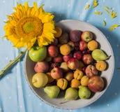 Una ciotola di frutti con un girasole Fotografie Stock