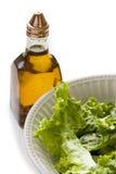 Una ciotola di insalata verde Immagine Stock Libera da Diritti