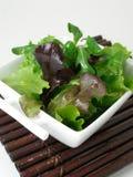 Una ciotola di insalata verde 2 immagini stock