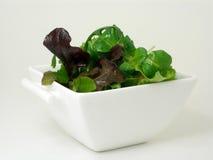 Una ciotola di insalata verde 4 fotografie stock libere da diritti