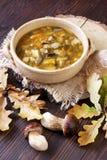 Una ciotola di zuppa di fungo fresca Fotografia Stock