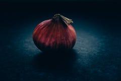 Una cipolla rossa Fotografie Stock