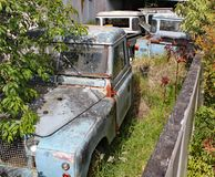 Una colección de tierra oxidada vieja Rover Defenders en un jardín con los árboles y los arbustos que crecen alrededor de ellos fotografía de archivo libre de regalías