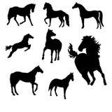 Una colección de vectores del caballo Foto de archivo