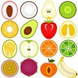 Una colección del vector de fruta fresca cortó adentro a medias Imagenes de archivo