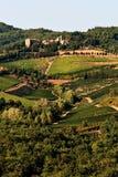 Una colina con los viñedos. fotografía de archivo