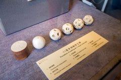 Una collezione di arte di piega ha scolpito da avorio Un'incisione è visualizzata nell'ordine fotografia stock libera da diritti