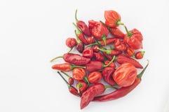 Una collezione di chilis rossi Immagine Stock