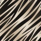 Modello della banda della zebra Fotografia Stock Libera da Diritti