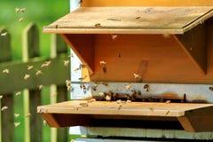 Una colmena de abejas Fotos de archivo