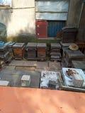 Una colmena, salvaje, sitios de la apicultura de la granja foto de archivo libre de regalías