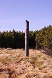 Una colonna di legno sola Immagine Stock