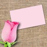 Una color de rosa y mensaje-tarjeta rosadas Imagen de archivo libre de regalías